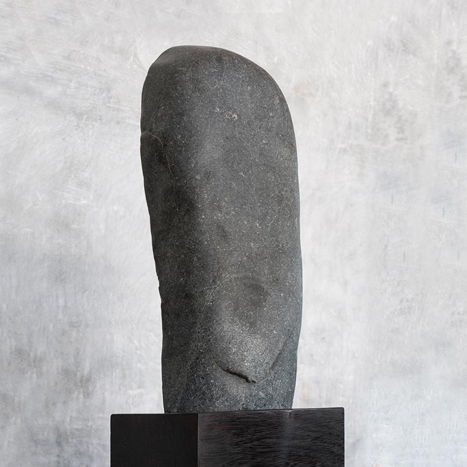 Jerome Abel Seguin - Face