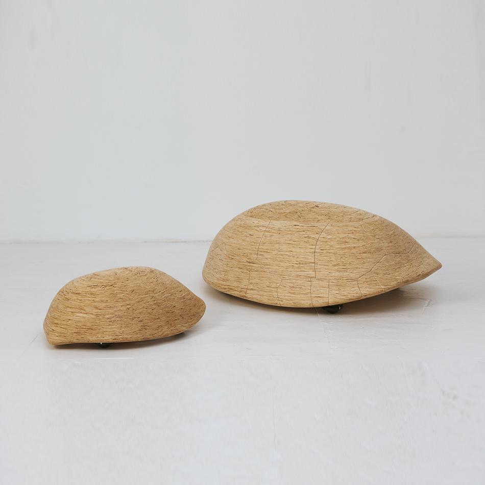 Chris Lehrecke - Tortoises