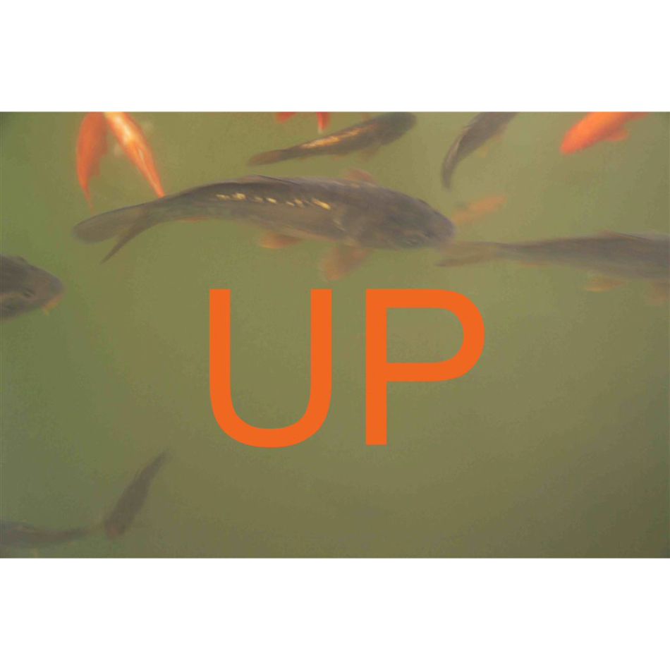 Christopher Makos - UP