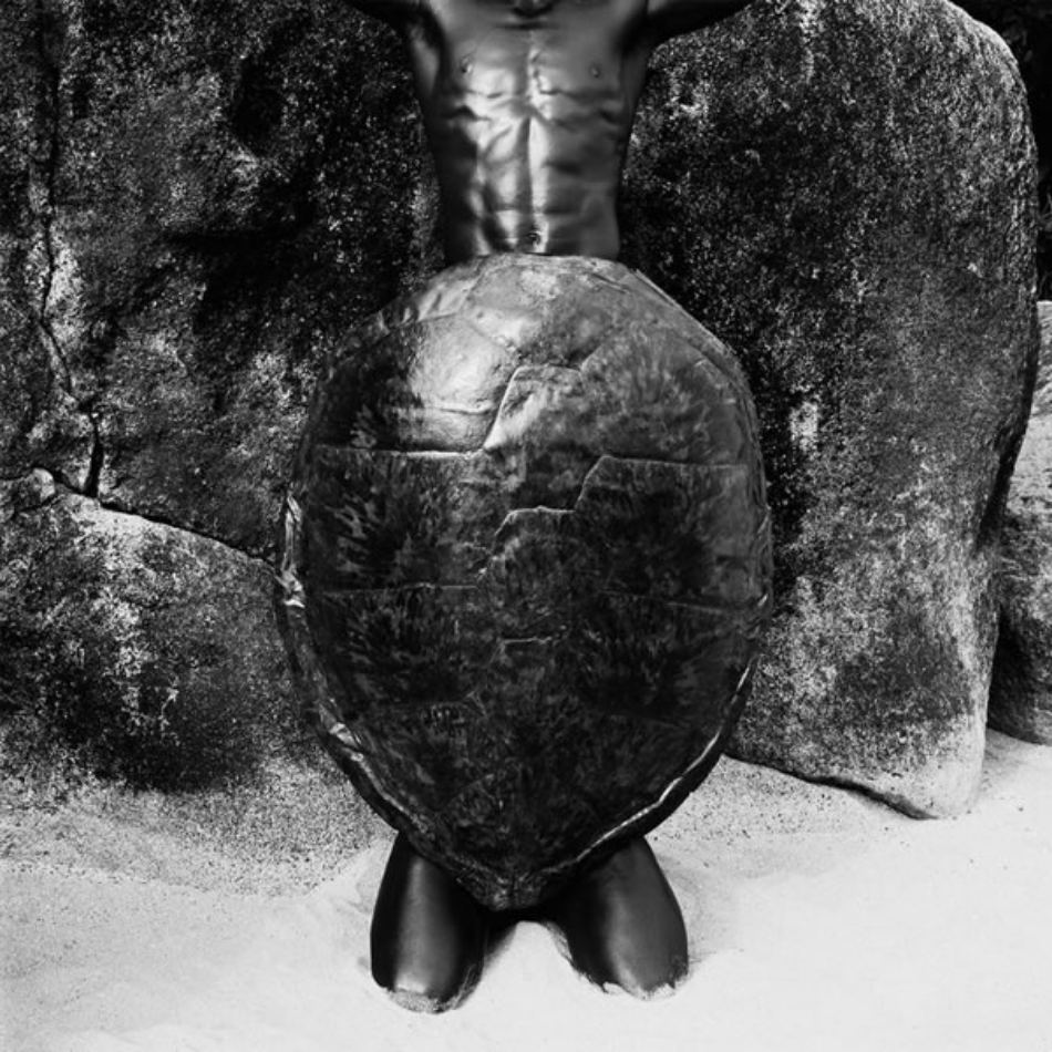Laurent Elie Badessi - Men And Turtle