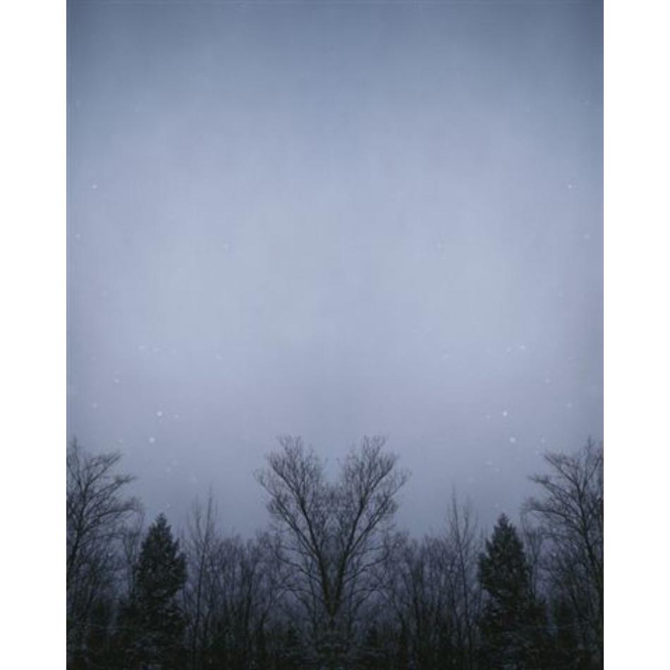 Gail Leboff - V Tree