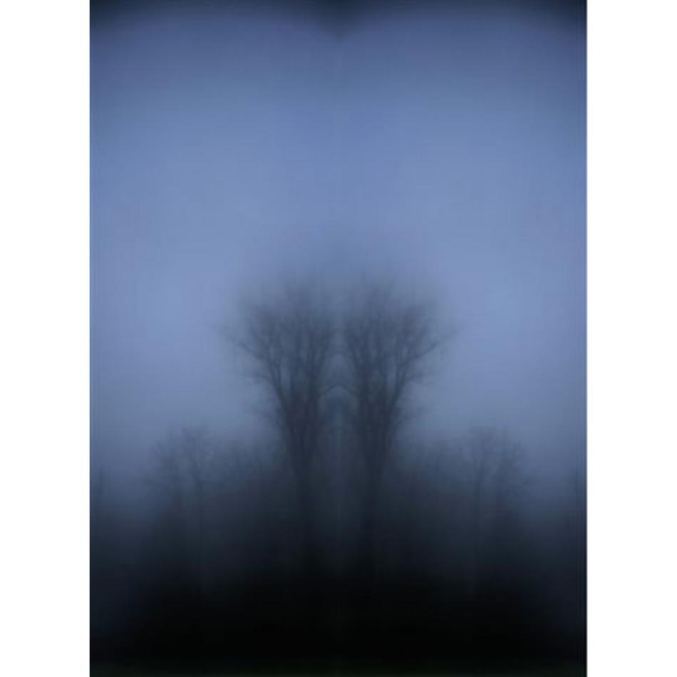 Gail Leboff - Misty Calm