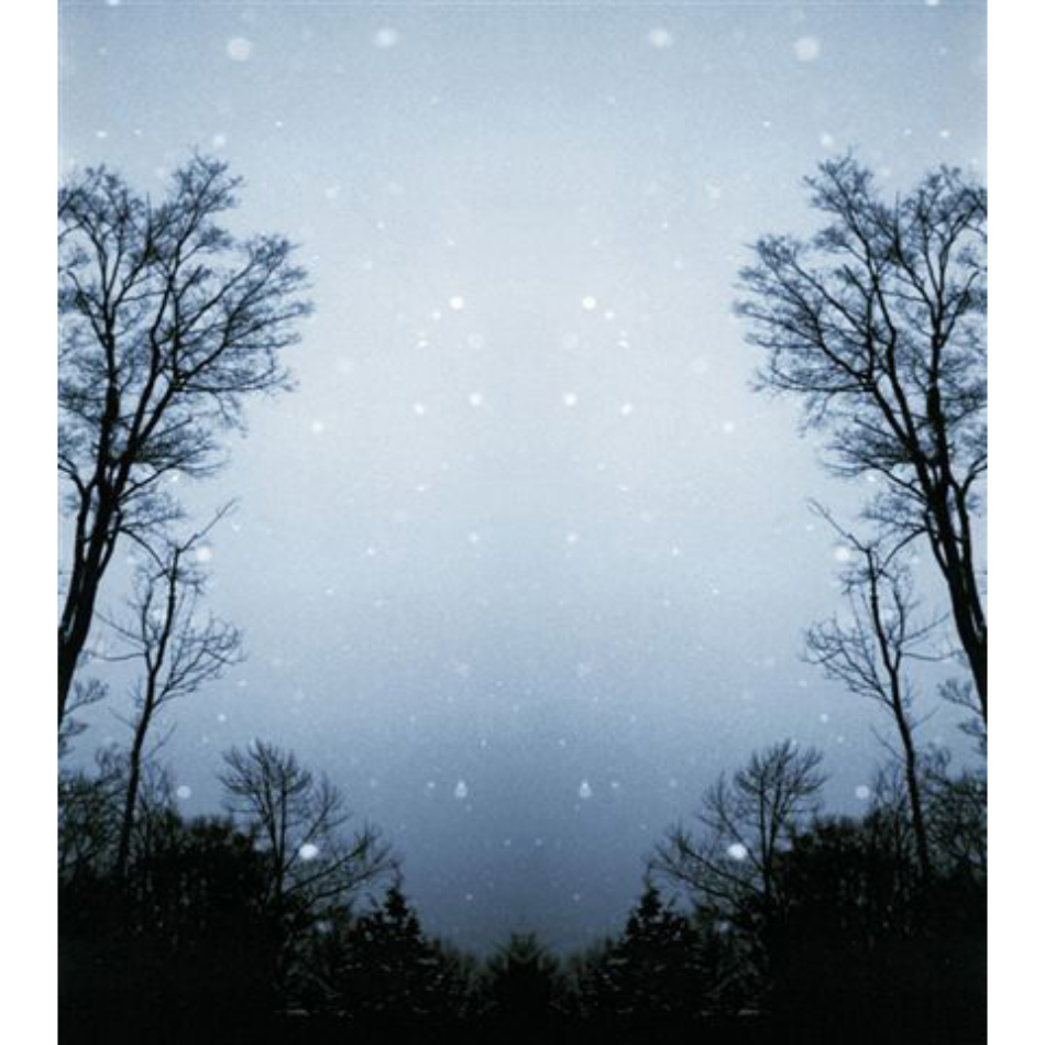 Gail Leboff - Snow night small