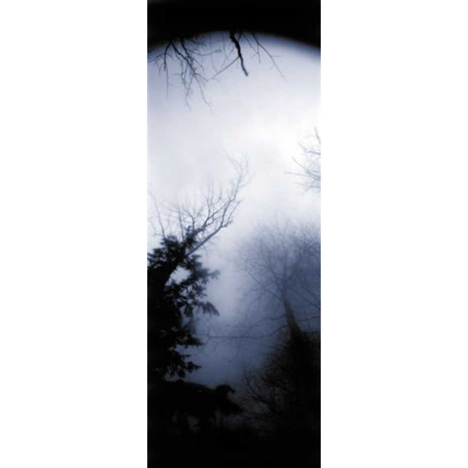 Gail Leboff - Blue night