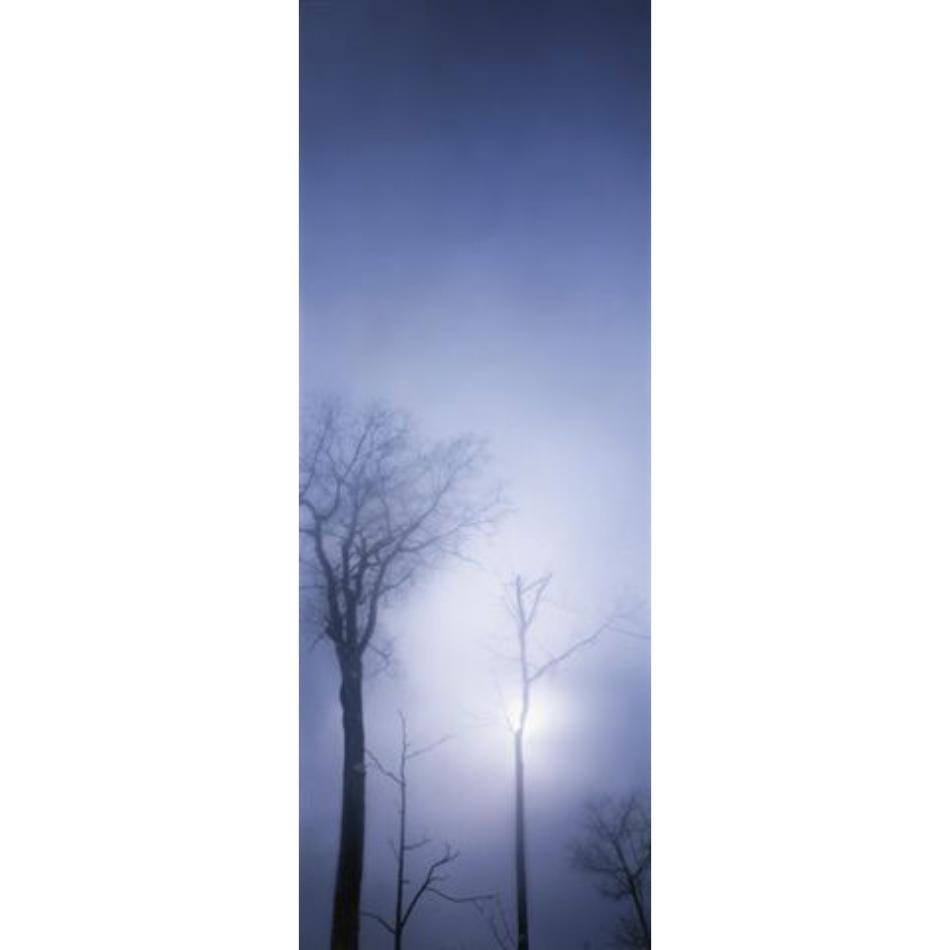 Gail Leboff - Promise of Sun