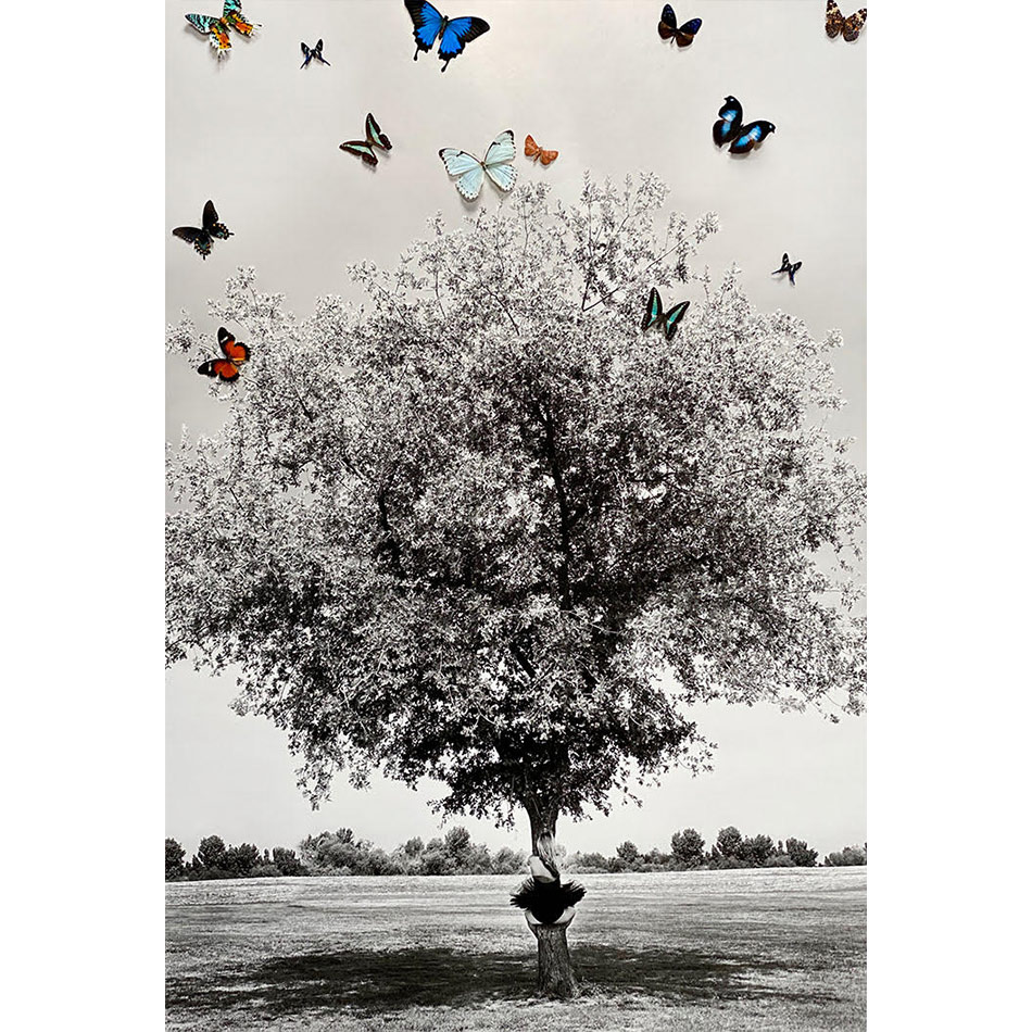 Marjorie Salvaterra-You-Are-Not-A-Tree2